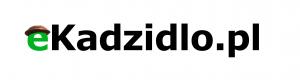 Wiadomości z Gminy Kadzidło, Fest Gmina!